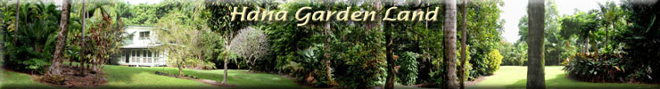 Hana Gardenland Hana Maui Hawaii - Vacation Rental - Hana Palms Retreat